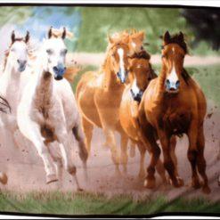 hkm hästfilt